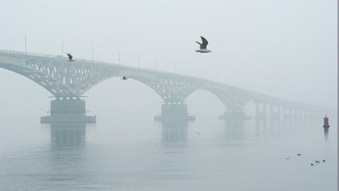 Синоптики обещают дождь, туман и грозу