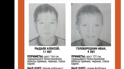 Пропавшие мальчики найдены живыми