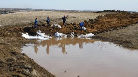"""""""Транснефть"""" опровергла информацию о загрязнении почвы в Балаковском районе"""