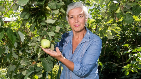 Итальянский археолог едет в Саратов искать старинные сорта яблок