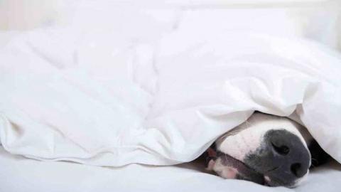 Синоптики предупреждают саратовцев о похолодании и заморозках