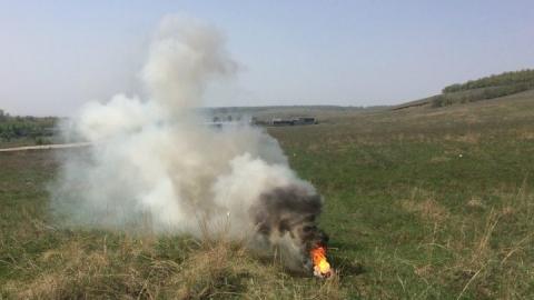 С начала апреля в Саратовской области произошло 34 лесных пожара