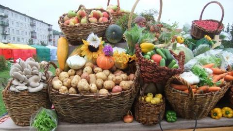 Саратовцев приглашают на продовольственные ярмарки