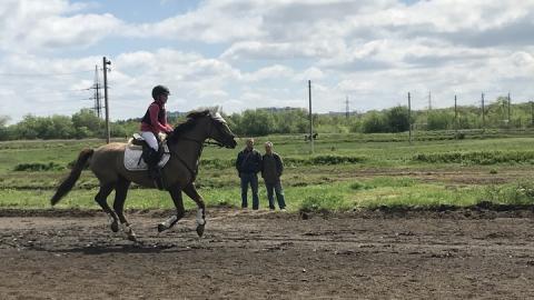 На Саратовском ипподроме открылся юбилейный сезон испытаний племенных лошадей