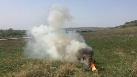 Леса в Саратовской области горели 37 раз с начала года