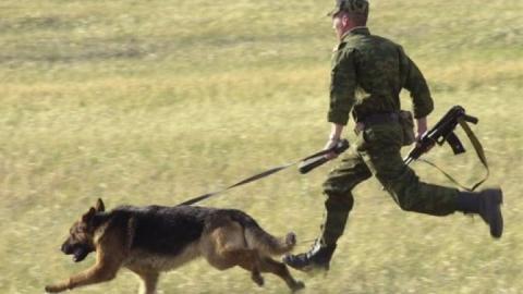 Саратовские пограничники задержали нарушителя границы