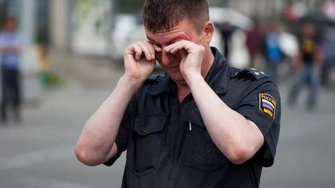 Саратовец отработает полгода за оскорбление полицейского