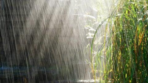 В Саратовской области ожидается  дождь, гроза и град