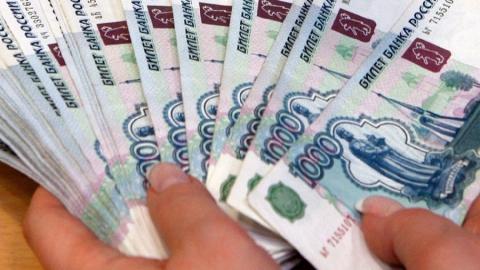 Сельхозорганизация получила грант в размере двух миллионов рублей по поддельным документам