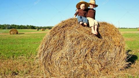 Дети сожгли три тонны сена