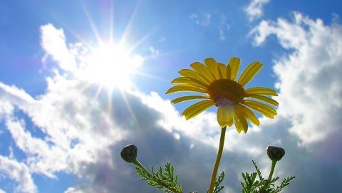 По области солнечно, ветрено и возможны дожди