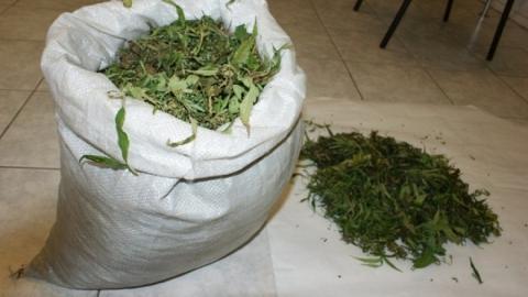 У жителя села Сосновка найдено почти шесть килограммов марихуаны