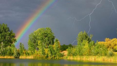 По области пройдут дожди с грозами