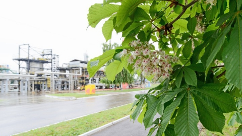 Саратовский НПЗ продолжает проводить природоохранные акции