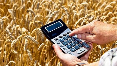 Саратовский фермер заподозрен в махинациях с субсидиями