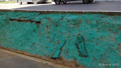 В Саратове для имитации газона покрасили краской землю
