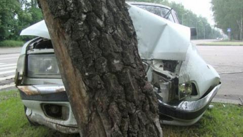 На проспекте Строителей пьяный водитель врезался в дерево