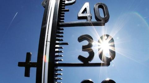 Сегодня в Левобережье до 35 градусов