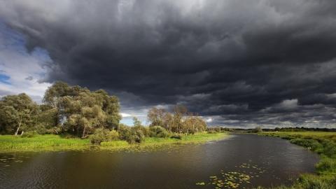 В Правобережье сегодня дожди и грозы