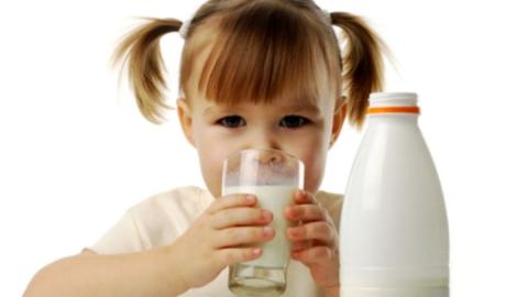 В Саратове в молоке обнаружены немолочные жиры