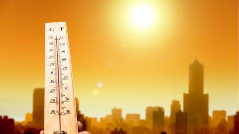 Сегодня на юге области 37 градусов