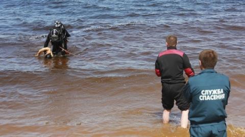 В Саратовской области утонул мужчина