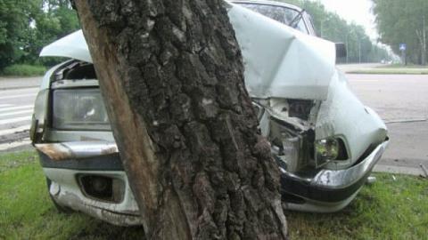 В центре Саратова врезался в дерево Volkswagen Tiguan