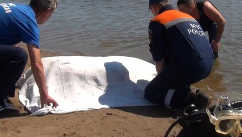 Водолазы нашли утонувшего в пруду мужчину