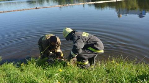 В селе Ножкино в пруду нашли утопленника