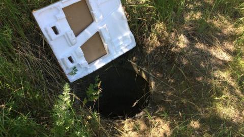 Следователи устанавливают владельца коллектора на Топольчанской, в который упал ребенок