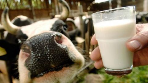 """Предложено отменить льготный НДС для """"молокосодержащих продуктов"""""""