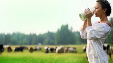 В саратовском молоке антибиотиков и пестицидов не выявлено