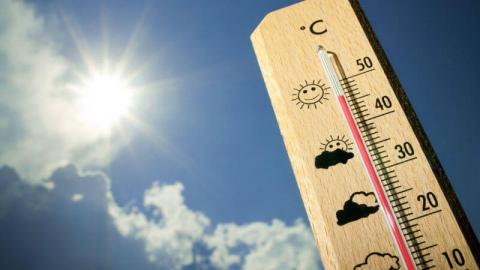Сегодня в Левобережье +34 градуса