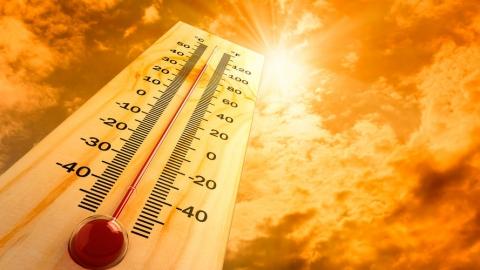 Сегодня в Левобережье +33 градуса