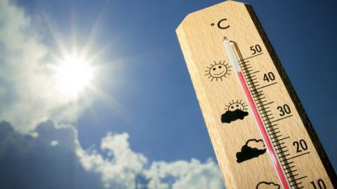 Сегодня температура по области +33 градуса