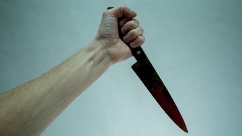 Перед судом предстанет убивший кузена за аморальный образ жизни покровчанин