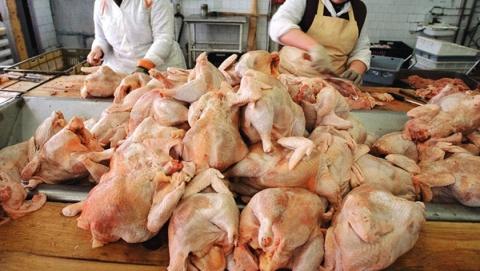 Ветеринары устроили погоню за продавцом опасной курятины