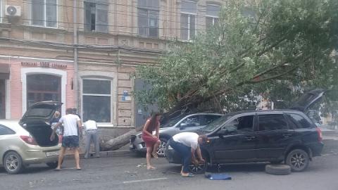 На Московской дерево упало на машину