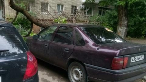 "На Рахова дерево рухнуло на припаркованный ""Опель"""