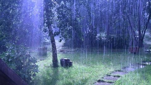 Сегодня в области пройдут дожди с грозами