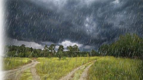 Сегодня по области пройдут небольшие дожди