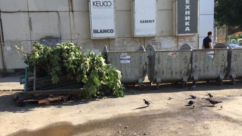 В центре Саратова не вывозят крупный мусор