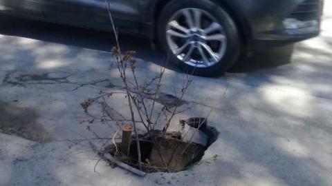 На Посадского найдена очередная «ловушка» для автомобилистов