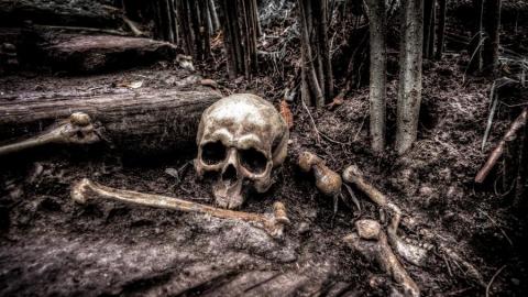 Следователи заинтересовались найденным человеческим скелетом