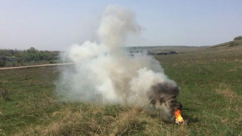 Число лесных пожаров в Саратовской области выросло в семь раз