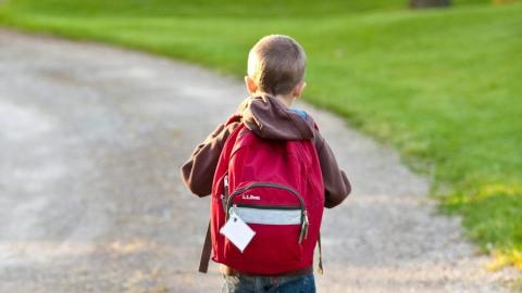 В области стартовала акция ГИБДД по борьбе с детским травматизмом на дорогах