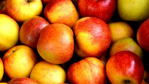 "Гостей фестиваля ""Багаевские яблочки"" накормят пирогом"