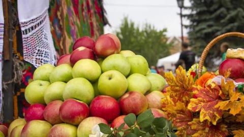 Сегодня в области проходят три гастрономических фестиваля