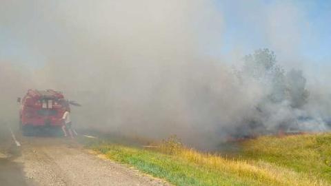 Под Самойловкой начался лесной пожар