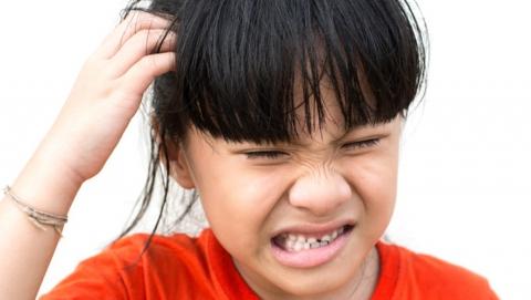 Санитарные врачи бьют тревогу в связи с детским педикулезом
